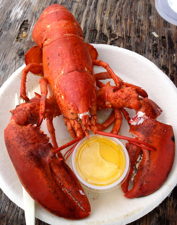 Lobster : The Best Lobster Bisque